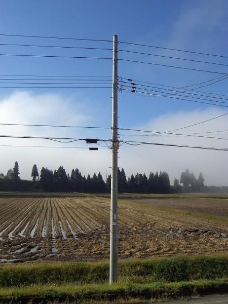 霧が晴れて青空が広がってきました