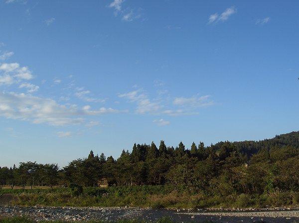 魚沼産コシヒカリの田んぼは青空が広がって気持ちいい一日でした