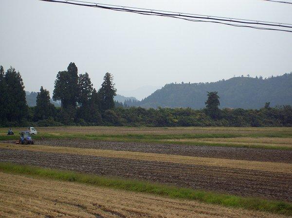 台風19号が近づいて魚沼産コシヒカリの田んぼでは雨が降り始めました