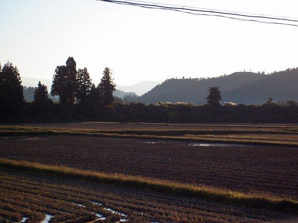 魚沼産コシヒカリの田んぼは秋晴れのあたたかな一日でした