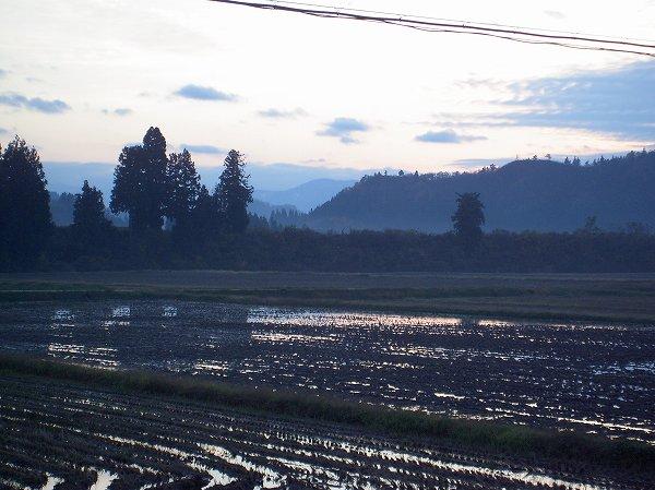 もうすぐ冬がここまで降りてきそうです@魚沼産コシヒカリの田んぼ