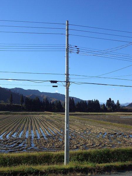 魚沼産コシヒカリの田んぼは青空が広がってあたたかいです