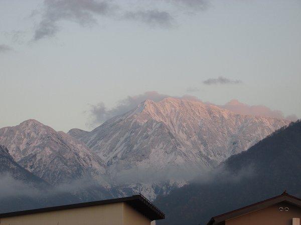 駒ケ岳が雪化粧して下の方まで白くなりました