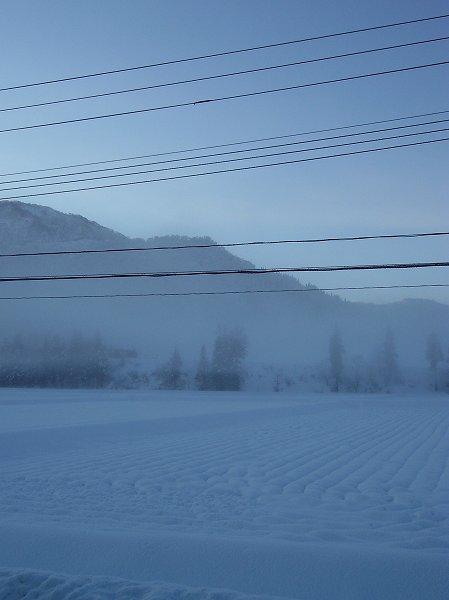 今朝の魚沼産コシヒカリの田んぼはこの冬一番のきびしい冷え込みです