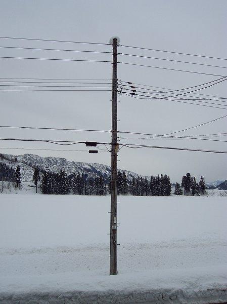 かなり雪が積もりました