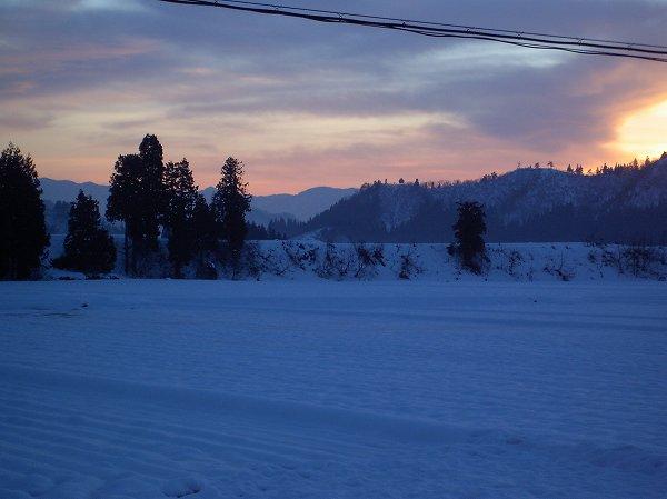 魚沼産コシヒカリの田んぼに積もった雪が解けてきました