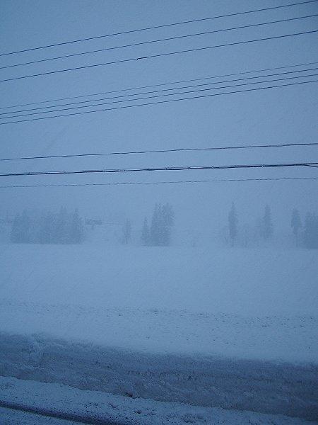 夕方近くになって積もりそうな雪に変わってきました