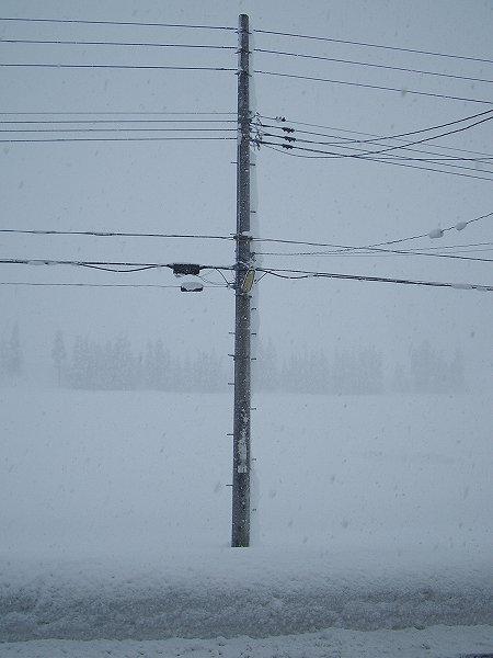 魚沼産コシヒカリの田んぼでは今日もまた大雪が続いています