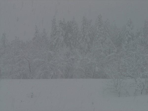 新潟県南魚沼市では今日もまた大雪が続いています