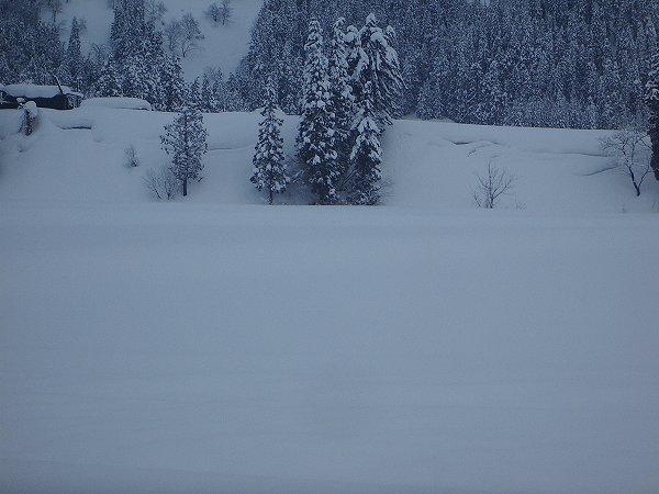 ようやく雪が止んでいます