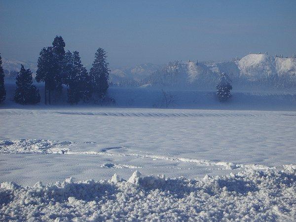 魚沼産コシヒカリの田んぼは今年一番のきびしい冷え込みです