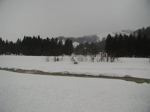 雪が解けて水無川の水面が出てきました