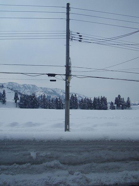 魚沼産コシヒカリの田んぼは雪が止んでいて穏やかです