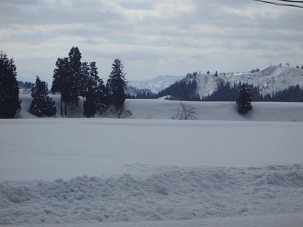 雪がひと段落・・・今日は青空が見えています
