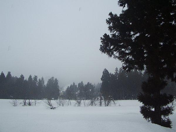 雨に煙る2月の水無川@新潟県南魚沼市