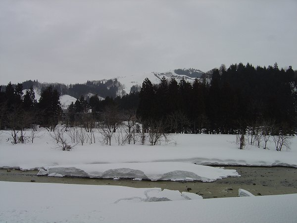 雪解けが進んだ水無川では大きく水面が開いています