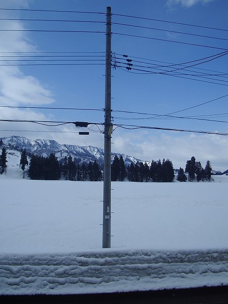 青空が見えてきれいな雪景色になっています