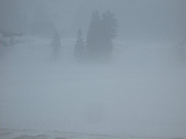 雨に煙る3月の田んぼ