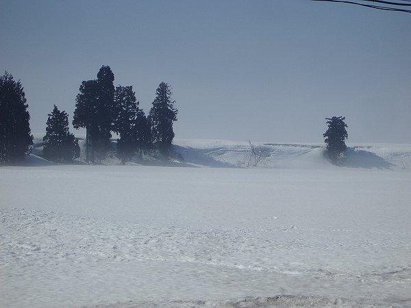 魚沼産コシヒカリの田んぼを覆っていた霧が晴れて青空が見えてきました