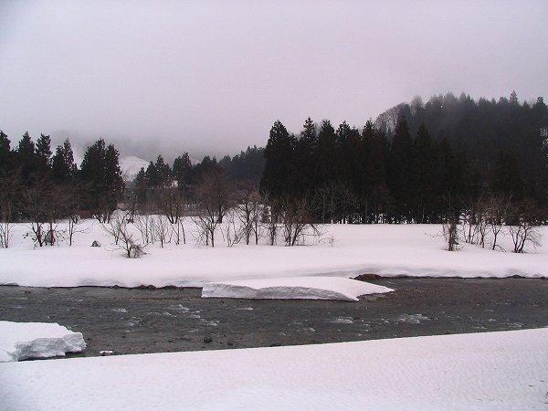水無川の雪解けが進んで水面がたくさん見えてきました