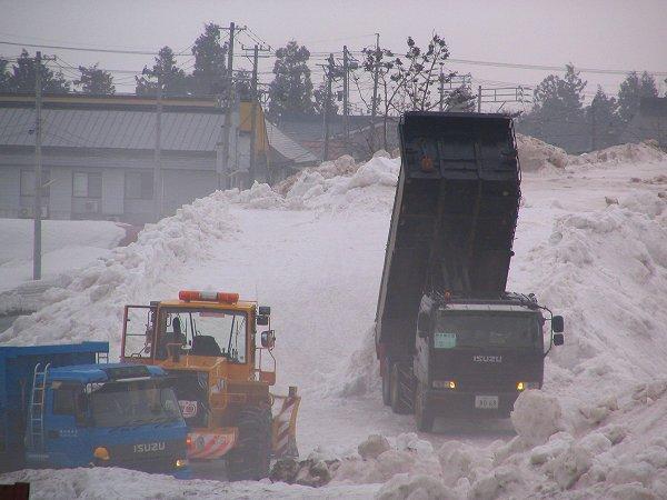 水無川の雪捨て場に次々とダンプが雪を運び込んできています