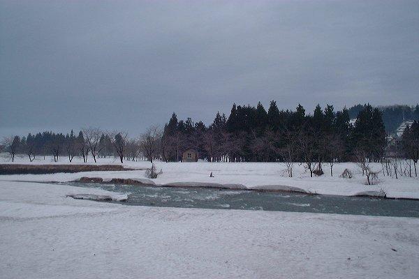 水無川の土手で雪解けが進んでいます