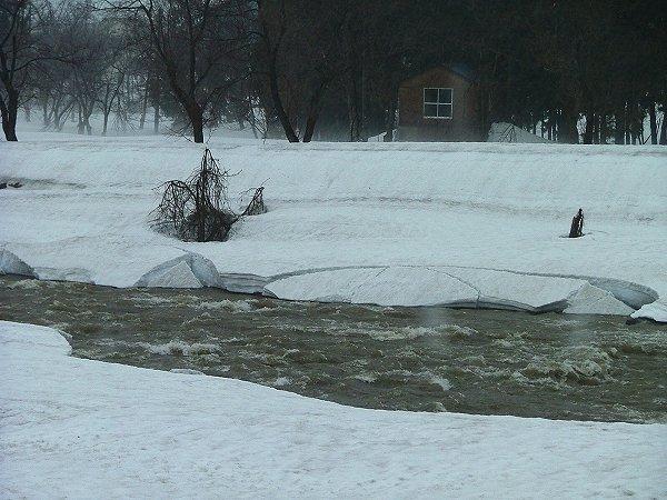 水無川の流れが濁って川岸の雪がくずれています