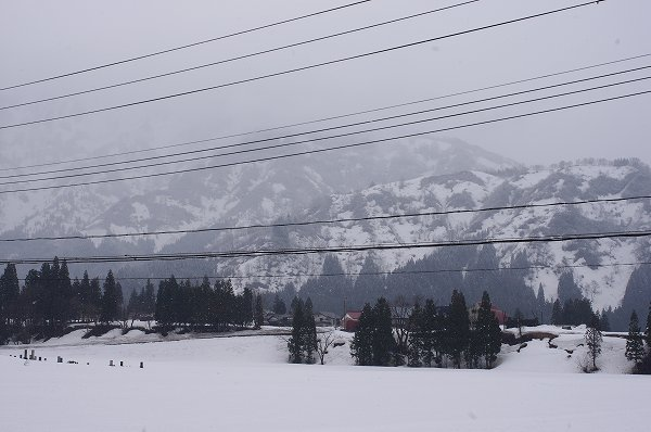 4月になったのに雪が降って寒い朝です