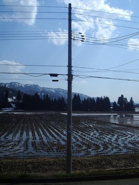 新潟県南魚沼市ではあたたかい日が続いています