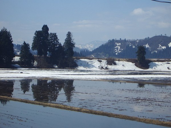 新潟県南魚沼市は今朝も青空が広がっていい天気です