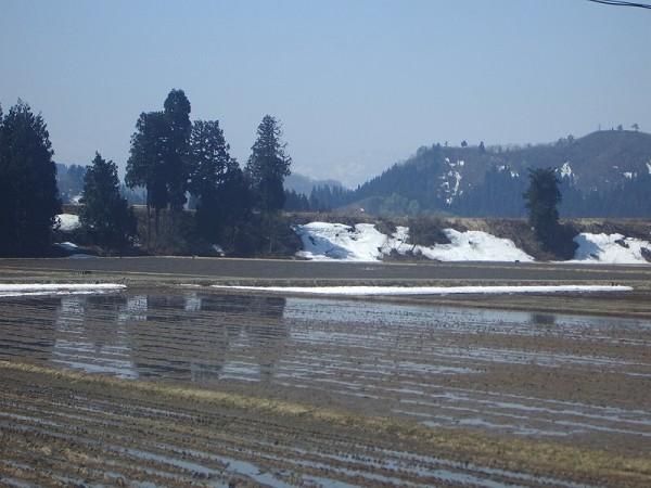新潟県南魚沼市はいい天気であたたかいです