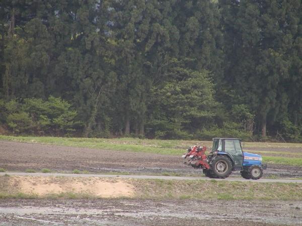 今日も田んぼでトラクターが動いています