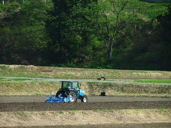トラクターによる田起こし作業が行われています