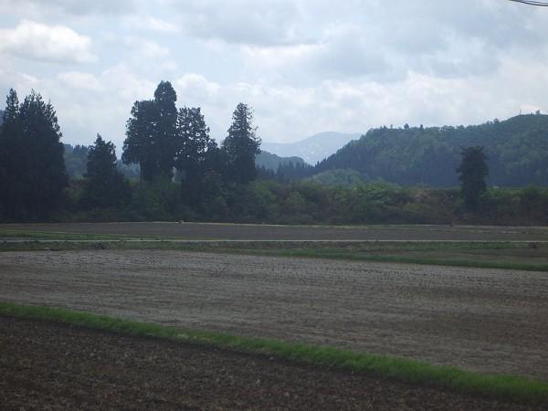 魚沼産コシヒカリの田んぼでは午前中に少し雨が降りました