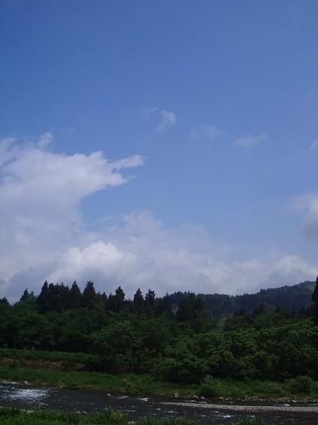雨が止んで青空が広がってきました