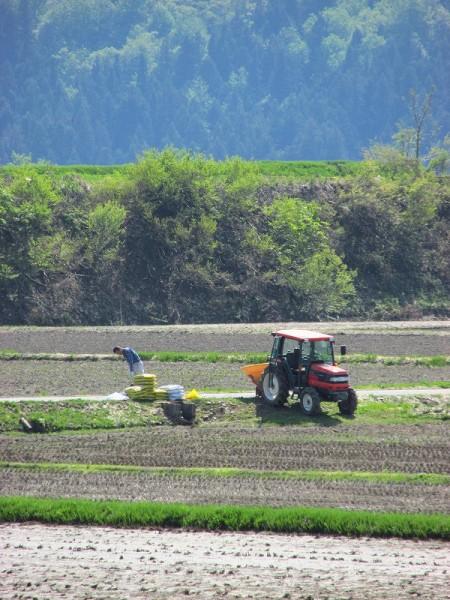 魚沼産コシヒカリの田んぼでトラクターによる肥料撒き作業が行われています
