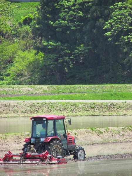 魚沼産コシヒカリの田んぼで代かき作業が行われています