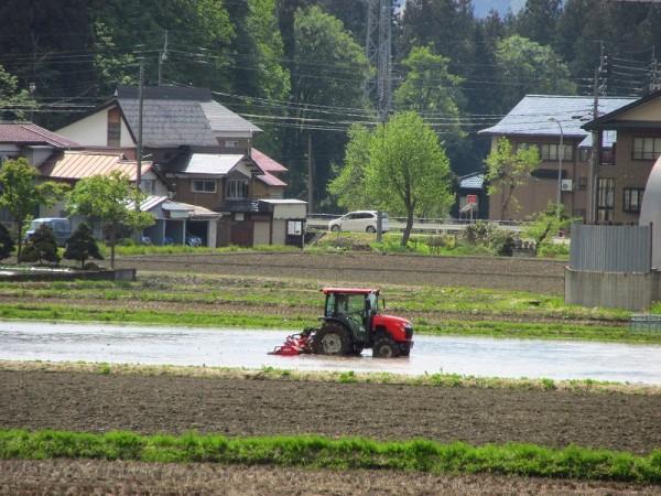 水を張って代かき作業を始めた田んぼ