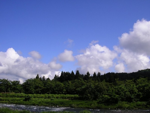 青空が見えて爽やかな天気です