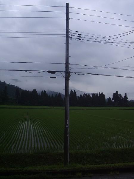 梅雨本番の景色の朝です