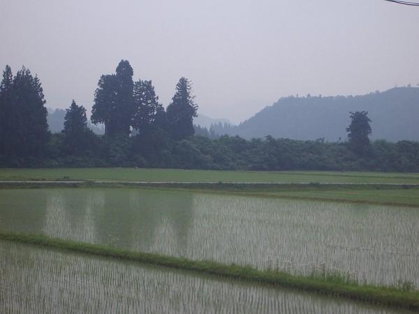 新潟県南魚沼市は雨降りで気温が低いです
