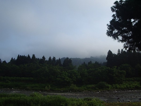 水無川の向こうが霧で覆われています