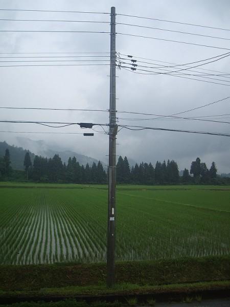昨日に続いて強い雷雨がありました