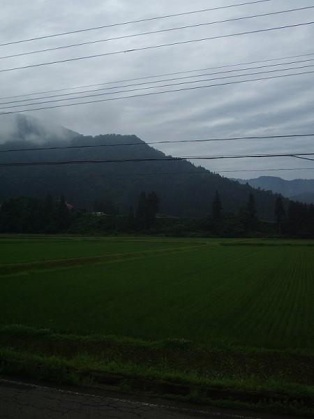雨上がりで涼しい朝です@新潟県南魚沼市