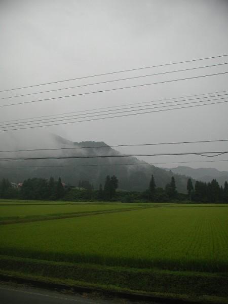 雨降りで気温が低めですが、ジメジメ感があります