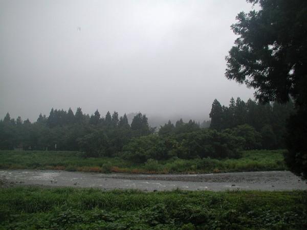 真夏になって枯れていた水無川に今日は雨水が流れています
