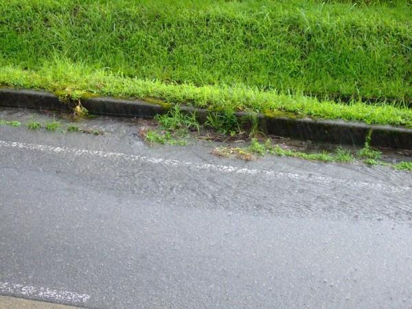 道路にはちょっとした小川のような流れができています