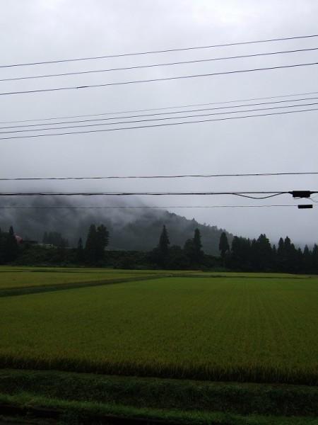 今朝もまたすっきりしない天気です