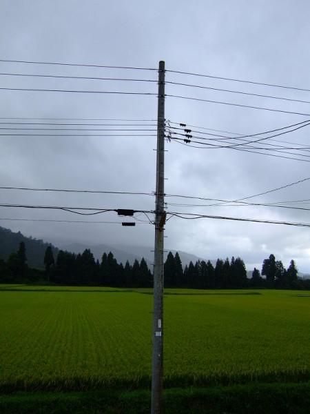 魚沼は今日もまた雨降りです