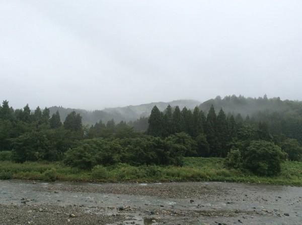また雨降りになりました